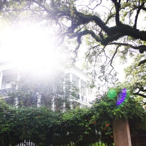a trip to new orleans