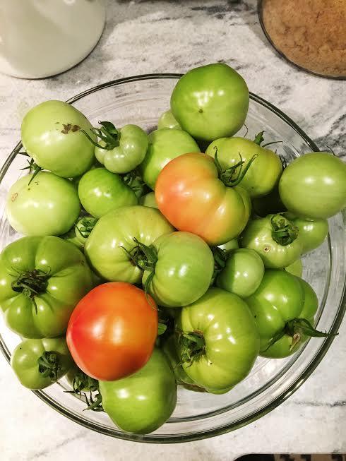 fried green tomato sandwich - gluten free with comeback sauce