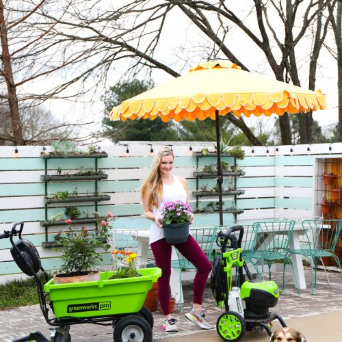 our favorite greenworks tools for spring