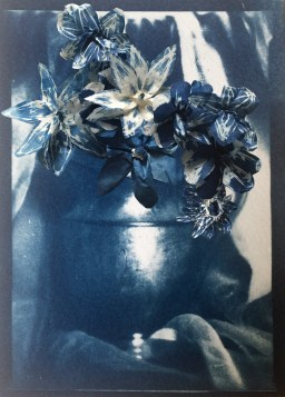 Anna Mavromatis, Cyanotype on coffe filters