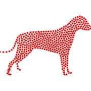 DCM Heart Disease in Dogs | The Happy Beast