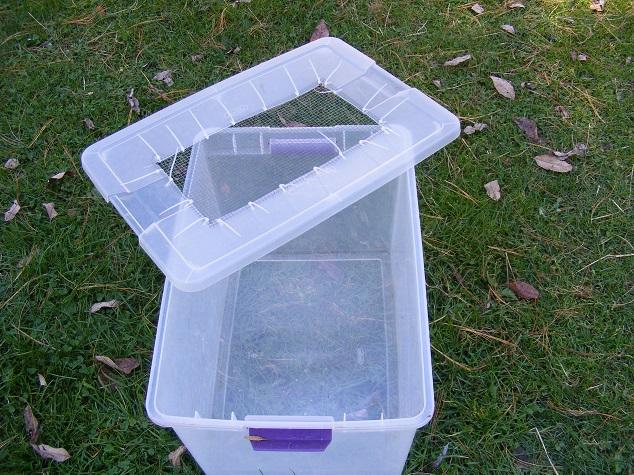 Plastic Tote Chicken Brooder