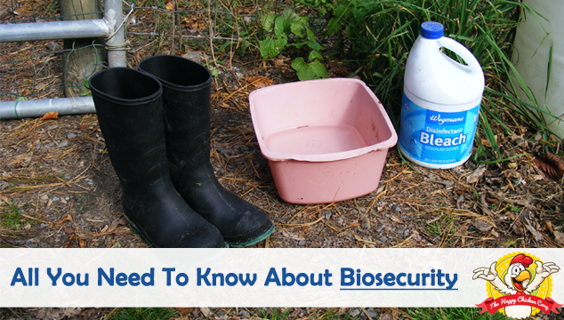 All You Need To Know About Biosecurity Blog Post