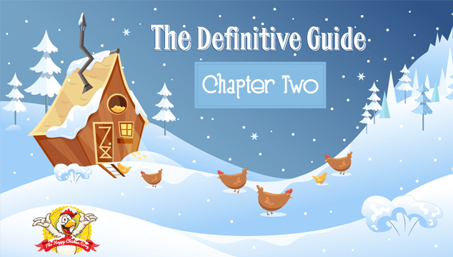 Chapter Two How To Keep Chickens Laying Eggs During Winter