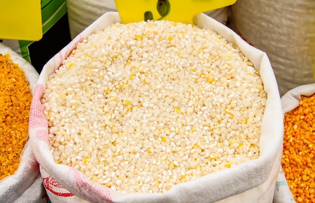 Cracked Corn Kernels