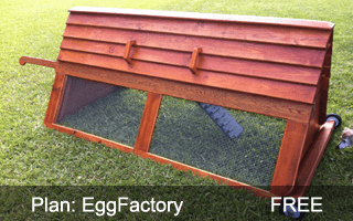 EggFactory