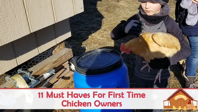 11 must haves for first time chicken owners