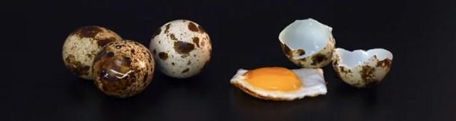 quail egg yolk