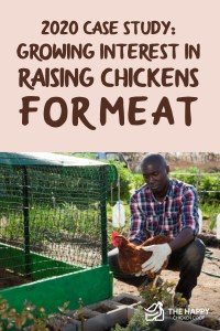 2020 Case Study- Growing Interest in Raising Chickens for Meat