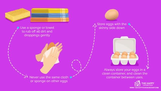 Washing Eggs