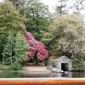 Blossom by the lake with boathouse