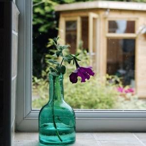 Vase on a window