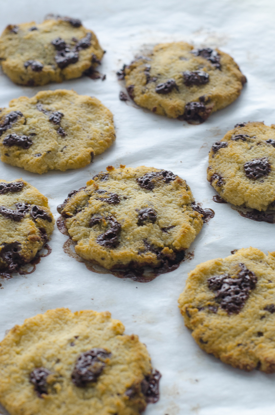A one-bowl recipe, these grain-free chocolate chunk cookies are easy to clean up but even easier to eat! Gluten-free, grain-free, dairy-free, keto, low-carb, Paleo.