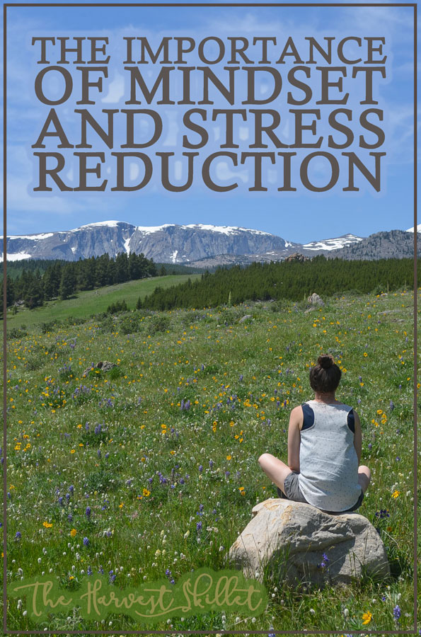 Did you know that stress can have a significant negative impact on your health and wellbeing? It can even prevent you from losing weight! It's time to learn about the importance of mindset and stress reduction!