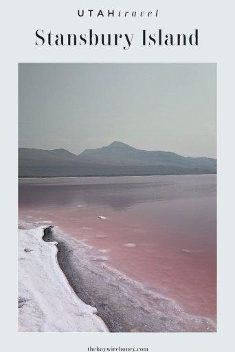 Pink Water at Stansbury Island, Utah