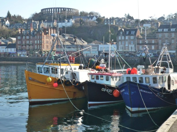 Boats in Oban harbour (2)