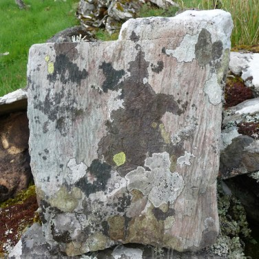 Garvellachs: Fascinating map lichen