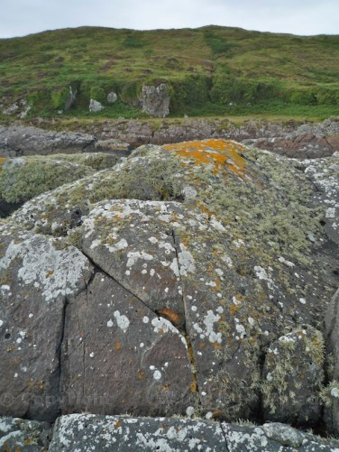 Garvellachs: Boulders near the shore