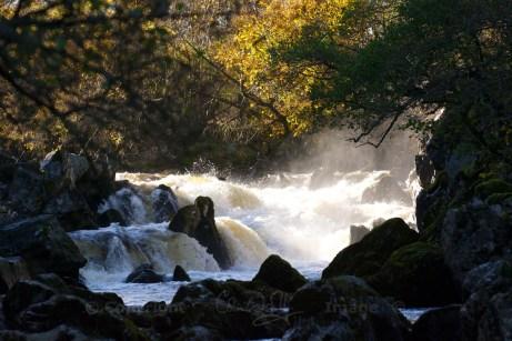 Falls on River Braan (Oct 2013)