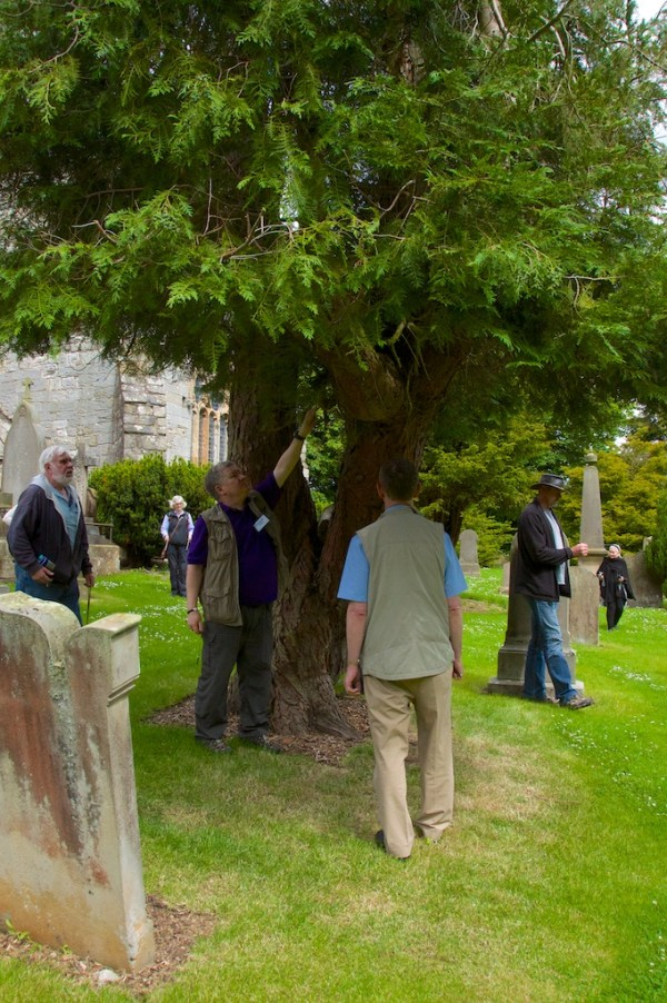 Dowsing at Torphichen 13