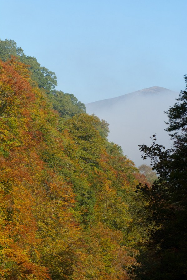 Killiecrankie autumn (10)