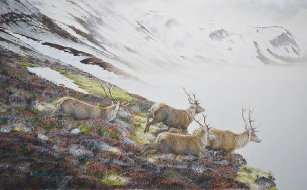 Red deer painting (5)