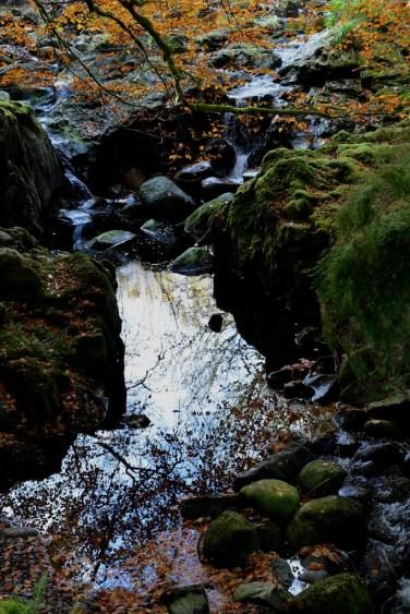 Loch Creran (CWa) 166