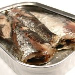 Health in a can! How to select the best canned fish like tuna and sardines