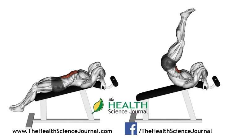 © Sasham   Dreamstime.com - Exercising for bodybuilding. Decline Reverse Crunch