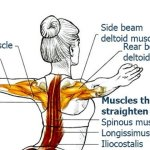 Exercises to Improve Your Posture and Bring Relief to Your Back & Spine, Finale