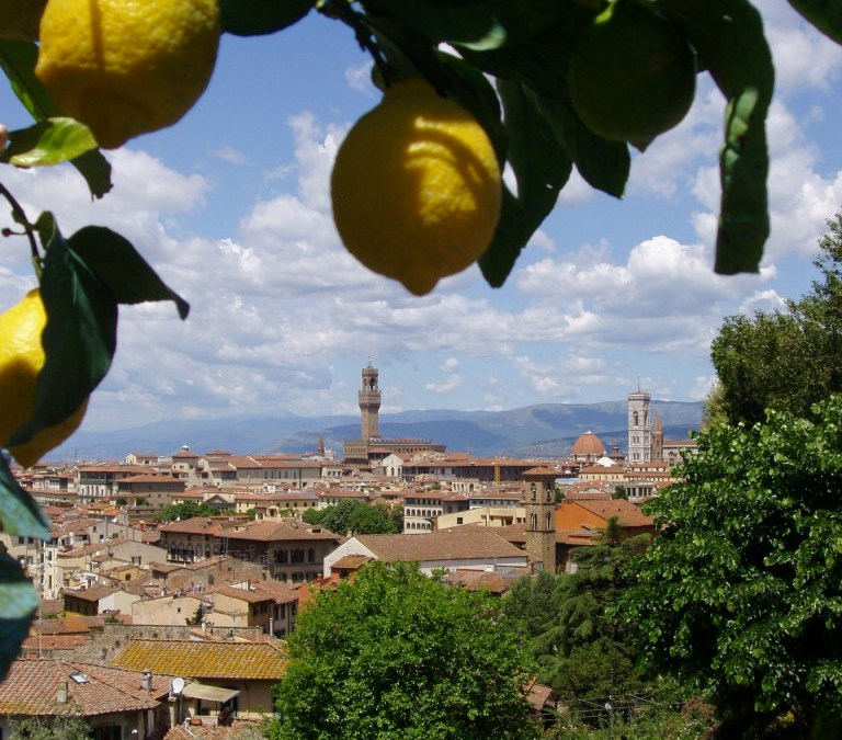 8th Search for the Healthy City—Florence and Tuscany, Italy