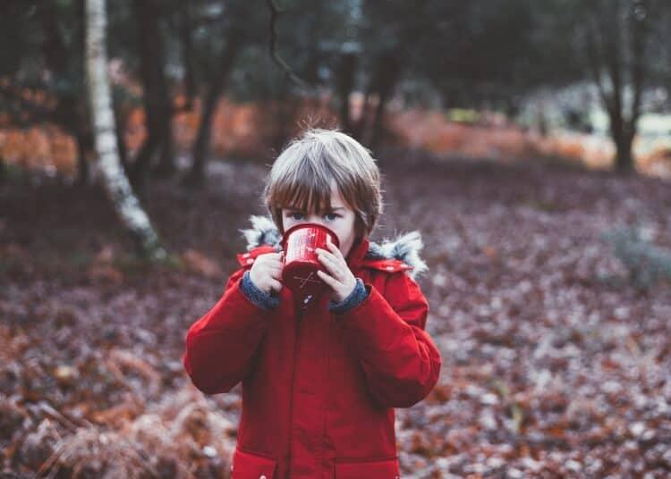 Health Benefits Of Drinking Birch Water