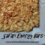Safari Energy Bars