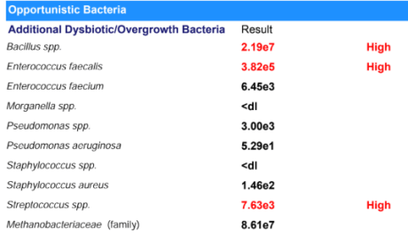 opportunistic bacteria