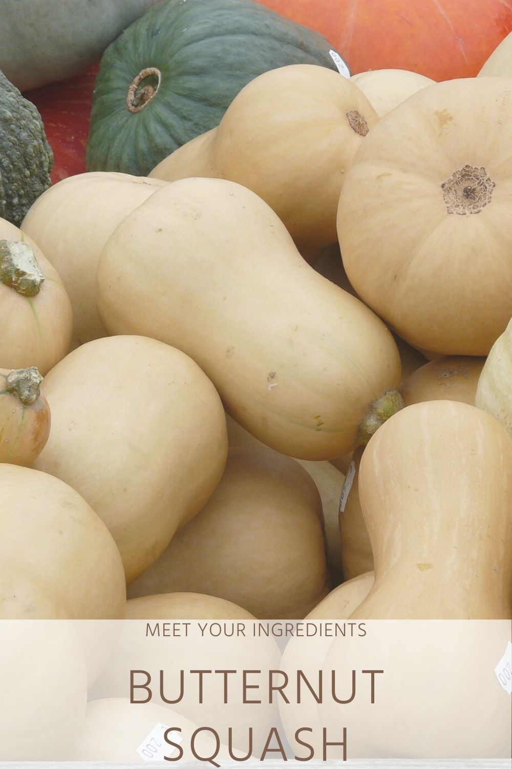 Dietitian Guide to Butternut Squash