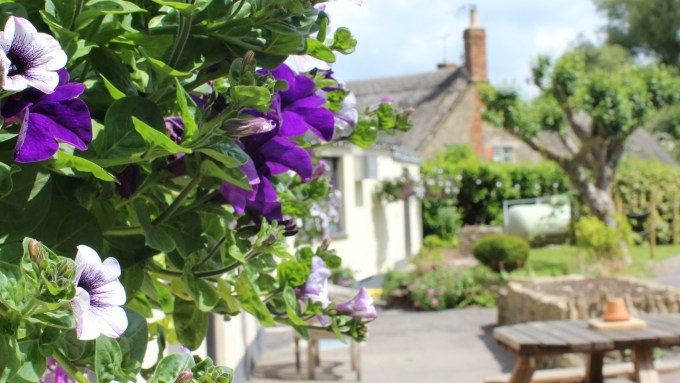 The Helyar Arms Hanging Baskets