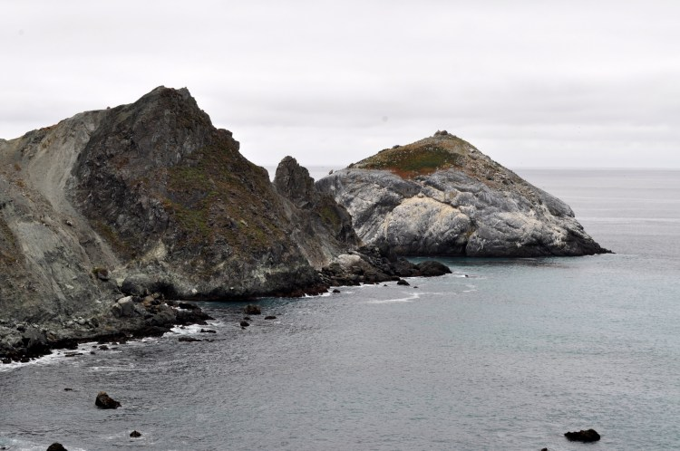 CA Ocean