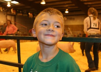 jeff burkhead Wyatt Wiley enjoyed watching the activity in the livestock arena  Aug. 5 at the Rio Blanco County Fair.