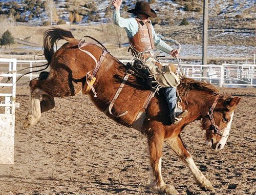 Dax Hadlock pictured riding a bronc at rough stock practice.