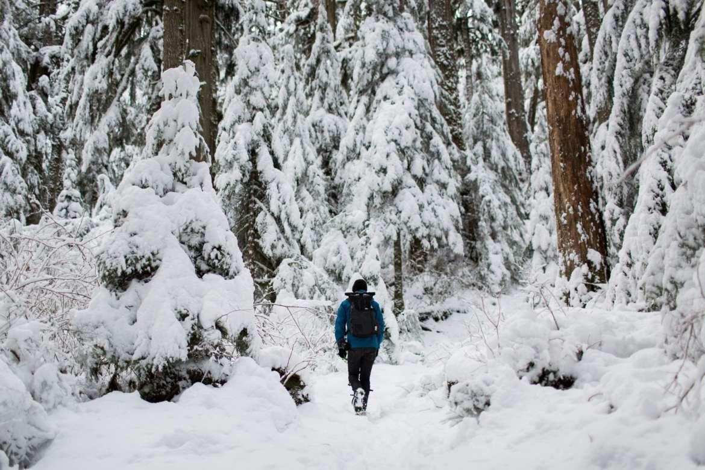 Hiken-in-de-sneeuw-4