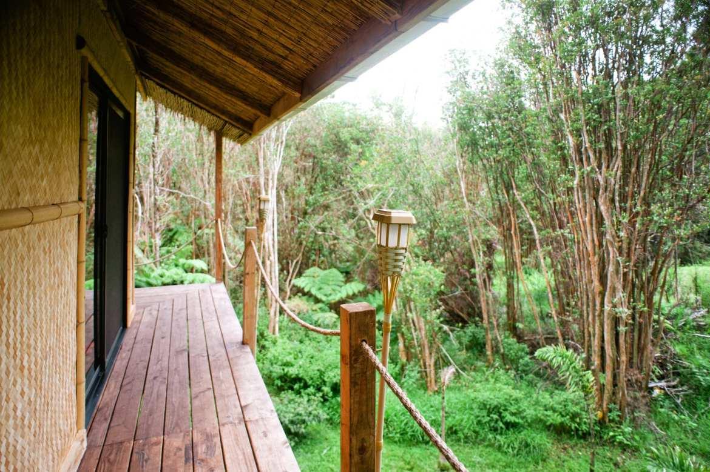 Natuur Airbnb's jungle