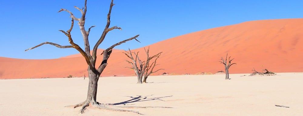 Afrika tips The Hike