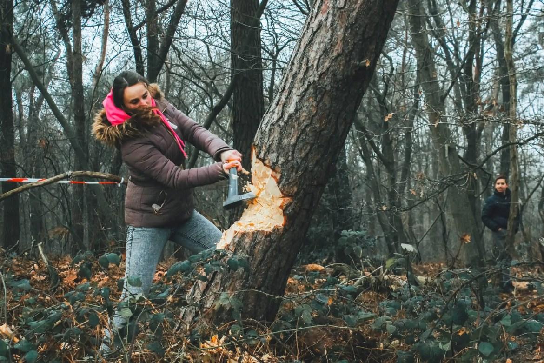 Boom omhakken - hout hakken