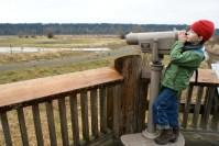 wetland, estuary, kids in nature