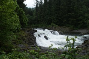 clark county hiking with children nature waterfall east fork lewis river