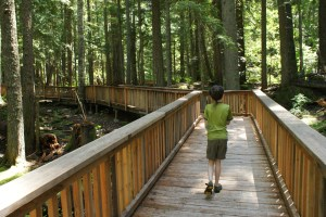 hiking with children, kids in nature, highway 20 trails