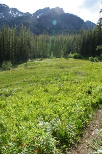 esmerelda basin trail hiking with kids washington mountains teanaway