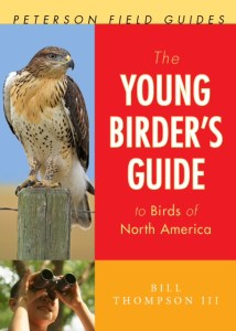 young birders guide to birds of north america, Bill Thompson III