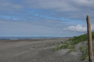 westport washington, twin harbors state park, beach, sand, ocean