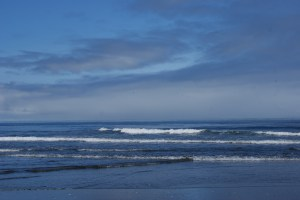 pacific ocean, westport washington, beach, waves, twin harbors state park